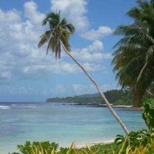 Epidemia odry na Samoa: zamknięto szkoły, planowane są obowiązkowe...