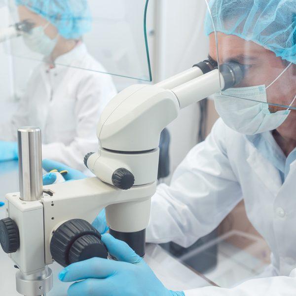 Właściwości immunomodulujące szczepionki BCG wykorzystywane w onkologii